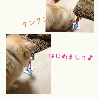 fc2blog_2013112422334431b.jpg