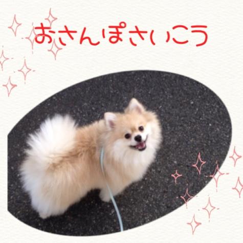 fc2blog_20141111145228460.jpg