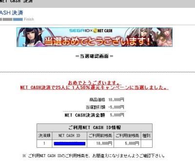 netcash.jpg