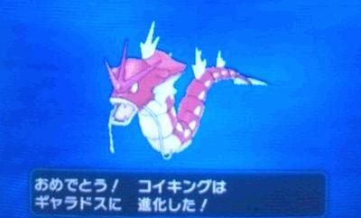 pokemonXY8798797988877.jpg
