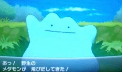 pokemonxy09888.jpg
