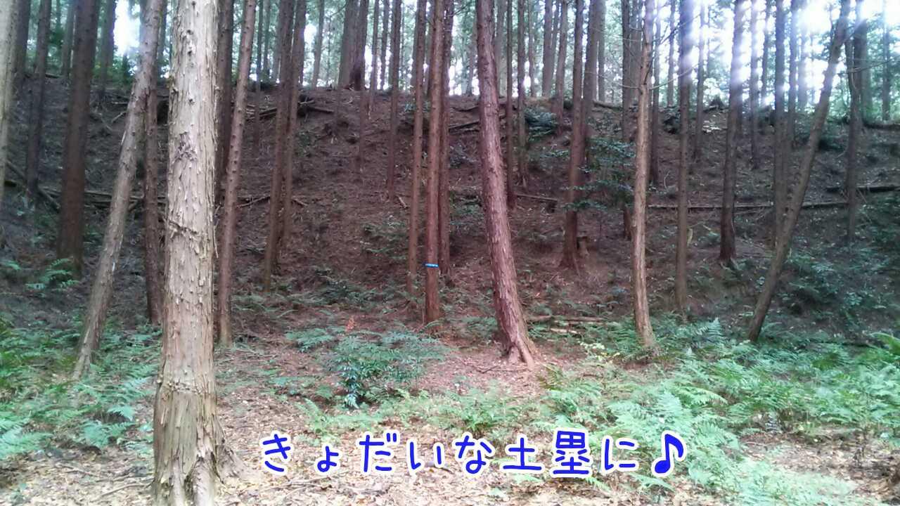 20141124210956709.jpg