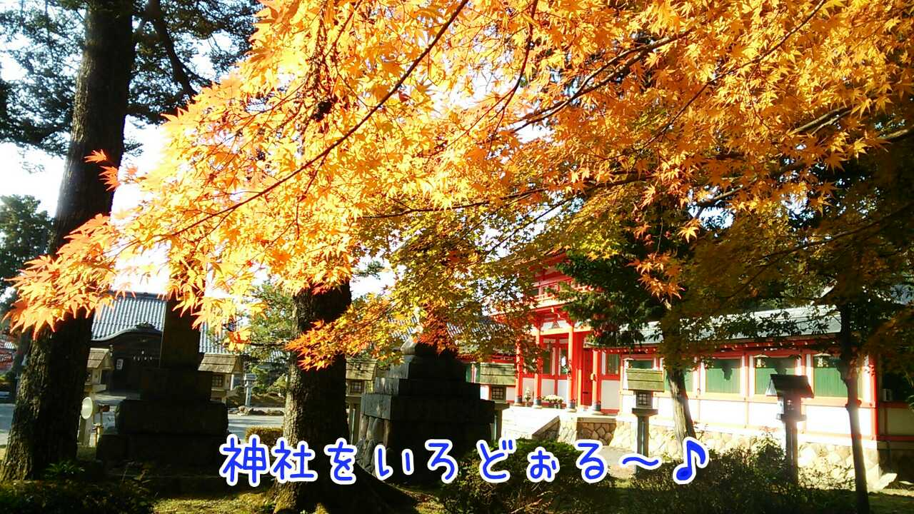 20141126030052557.jpg