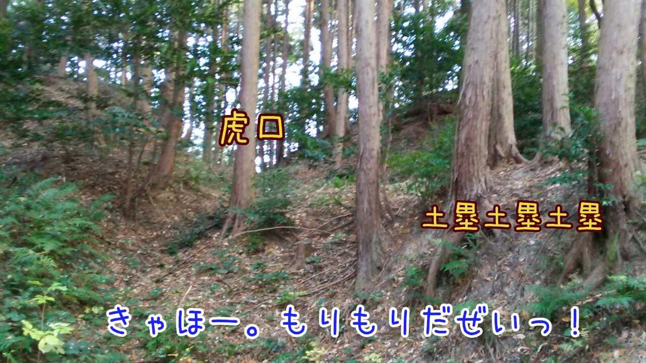 20141126205737431.jpg