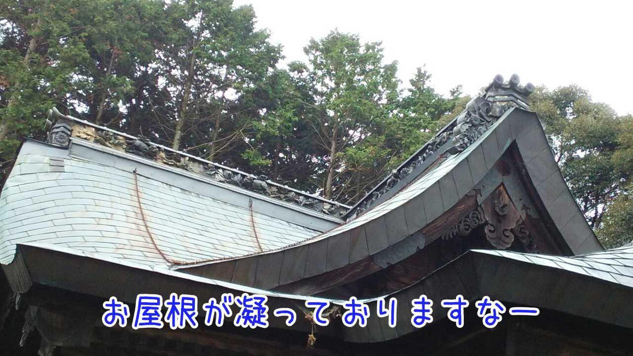 20141128062547362.jpg