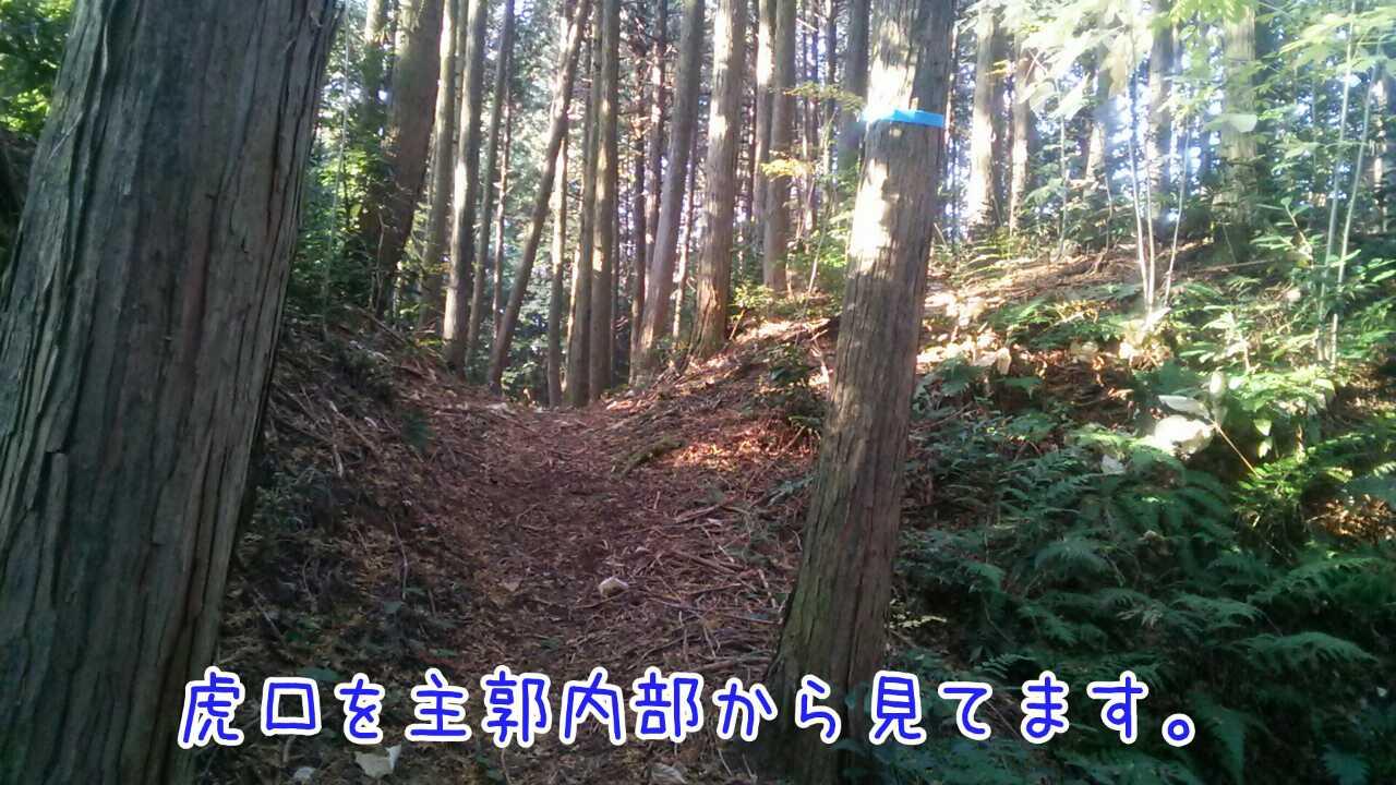 20141130101401662.jpg