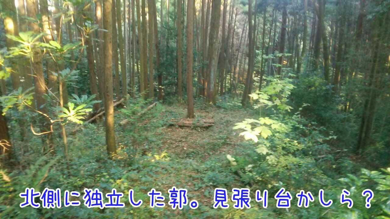 20141130102126457.jpg