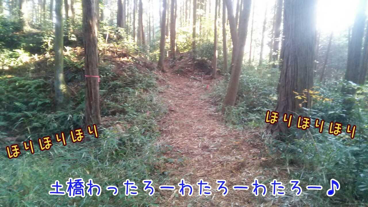 20141130102558692.jpg