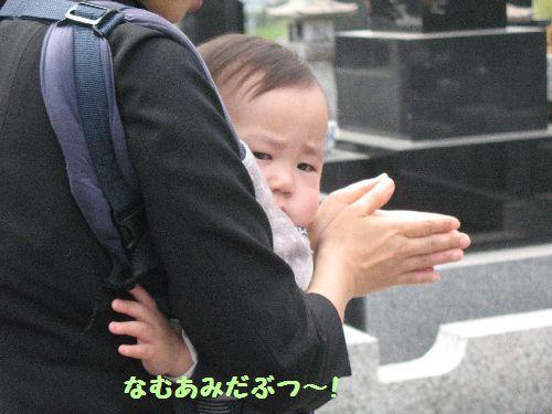 IMG_0257なむ