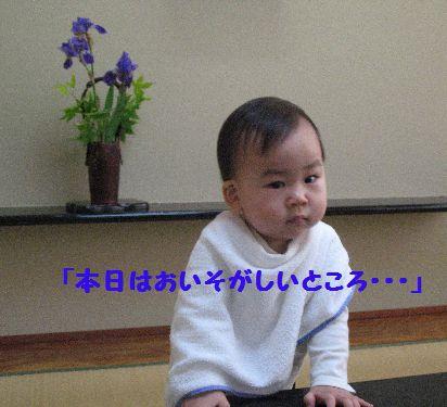 IMG_0267本日