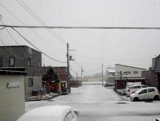 s-529-1初雪