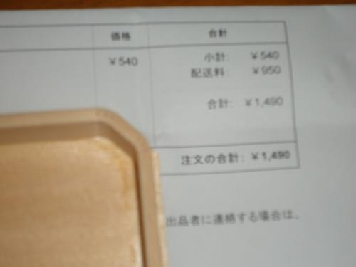 DSC05339.jpg