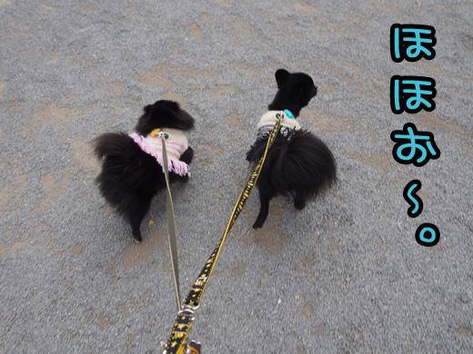 munakata01.jpg