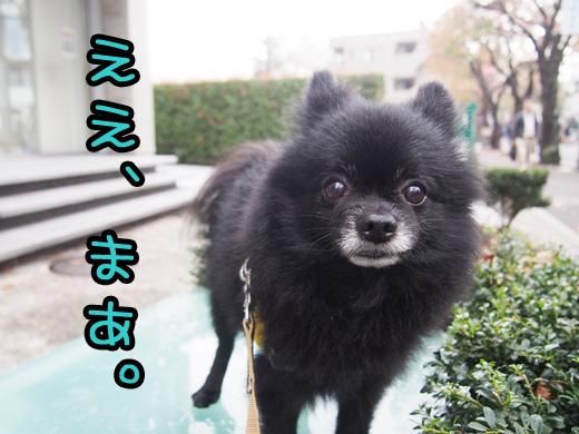 sorehayokuiwareasu.jpg