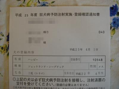 DSC05416_convert_20130426221106.jpg