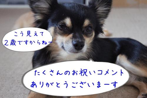 201311180001444ff.jpg