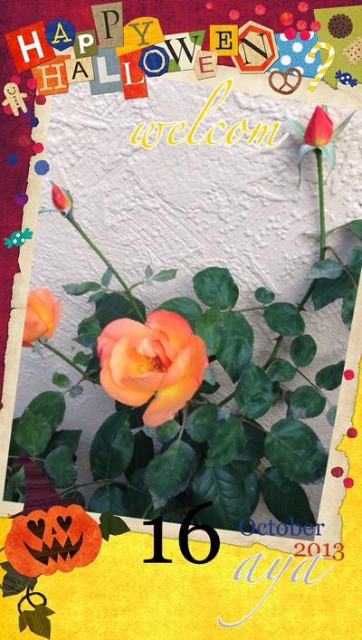 fc2blog_20131016215908ca8.jpg