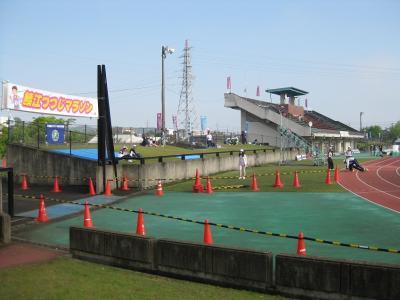2013年鯖江つつじ 003
