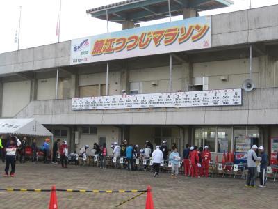 2013年鯖江つつじ 001