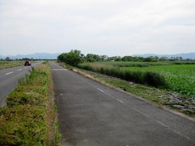琵琶湖畔 003