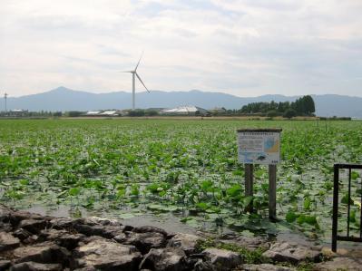琵琶湖畔 002