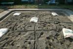 トキサンドクリーン散布の仕方
