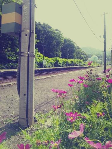 KK0811_01-thumbnail2.jpg
