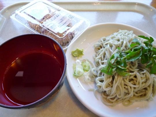 13_04_27-09yamanakako.jpg