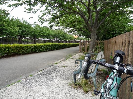13_06_01-04takaohamura.jpg