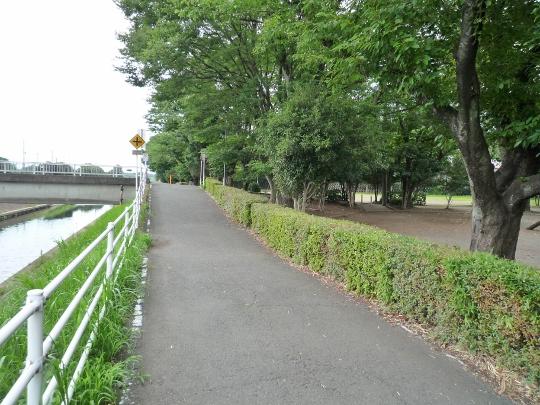 13_08_04-24sakaigawa.jpg