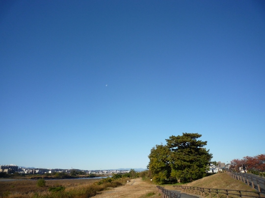 13_11_23-01okutamako.jpg