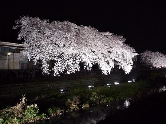 nogawa13_03-02.jpg