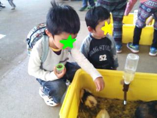 snap_tanosiiikuji962_201341173534.jpg
