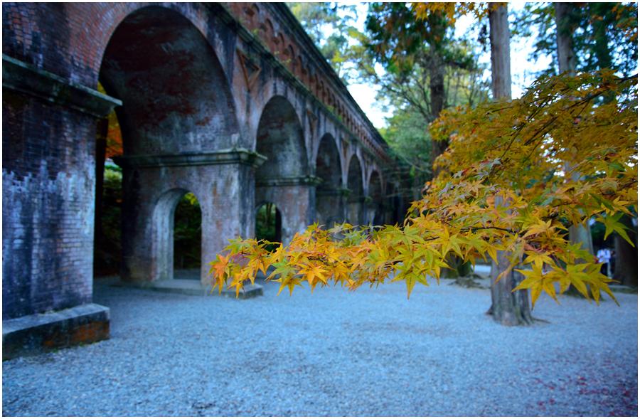 秋の京都・助手3