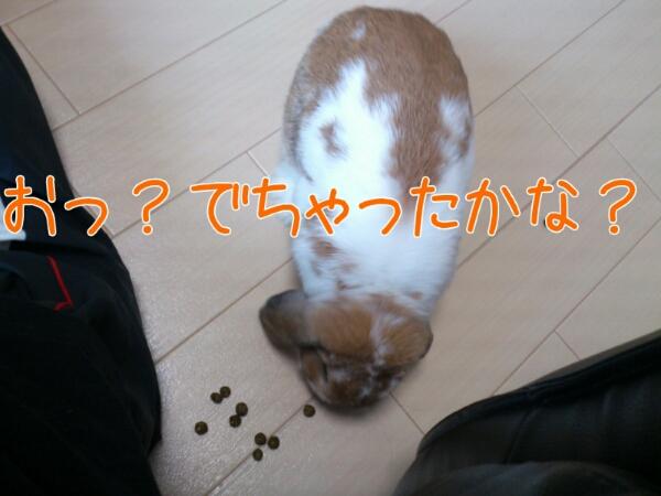fc2_2013-06-13_11-13-05-981.jpg