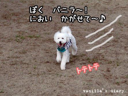 IMG_4823.jpg