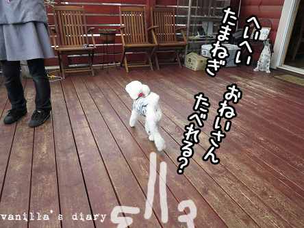IMG_5481.jpg