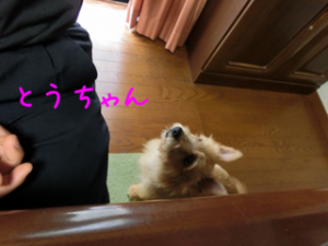 201306190805080b8.png