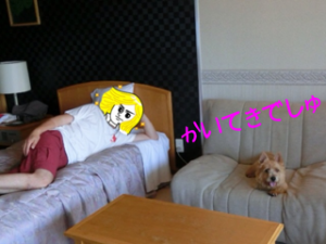 201306302226064a1.png