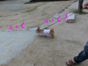 2013071609444270f.png