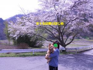 3_convert_20130417220203.jpg